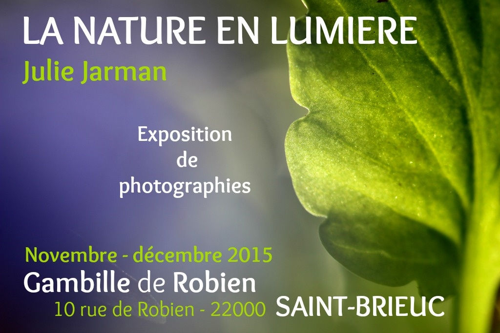 photos la Nature en lumière / Julie Jarman